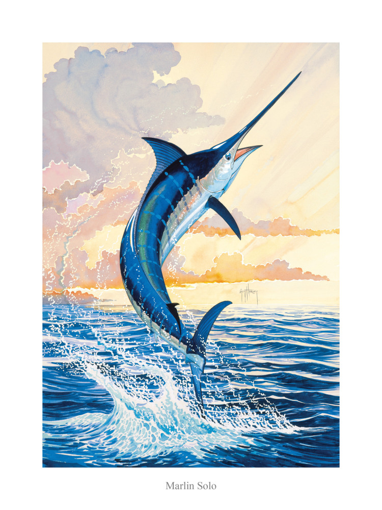 Park West Gallery Guy Harvey