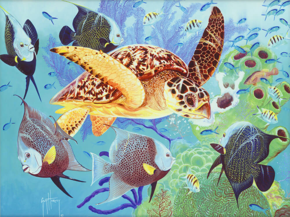 The science of Guy Harvey art - Park West Artists