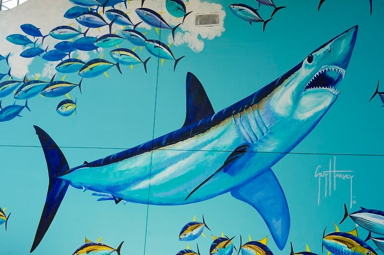 Part of the finished mural by Guy Harvey at SeaWorld Orlando. (Photo courtesy of Sea World Parks & Resorts Orlando)