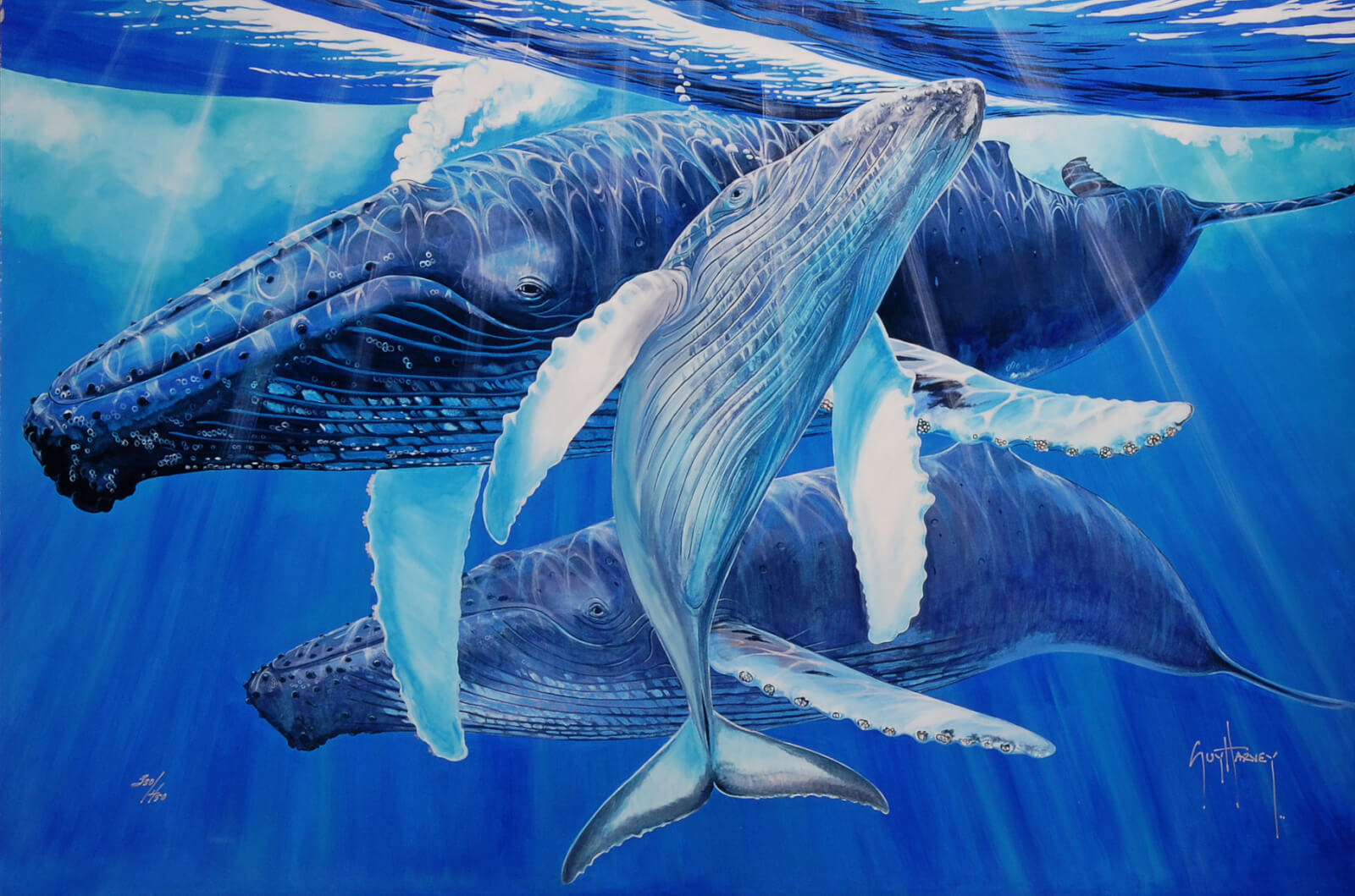 """""""Mother's Touch"""" (2015), Guy Harvey"""