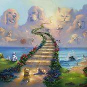 All Pets Go to Heaven Jim Warren Park West Gallery