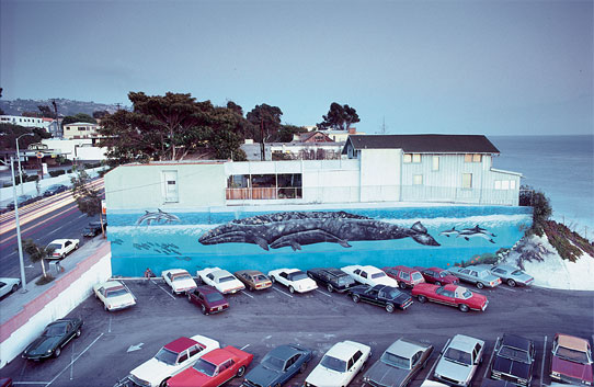 """Wyland's first """"Whaling Wall"""" mural, """"Gray Whale and Calf."""" It was originally finished in 1981, but was repainted in 1986. (Image courtesy of the Wyland Foundation)"""