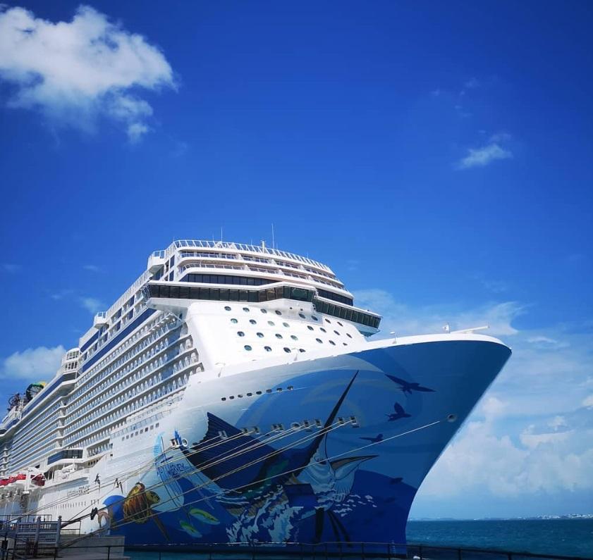 From @vivivitality: Norwegian Escape cruise ship art