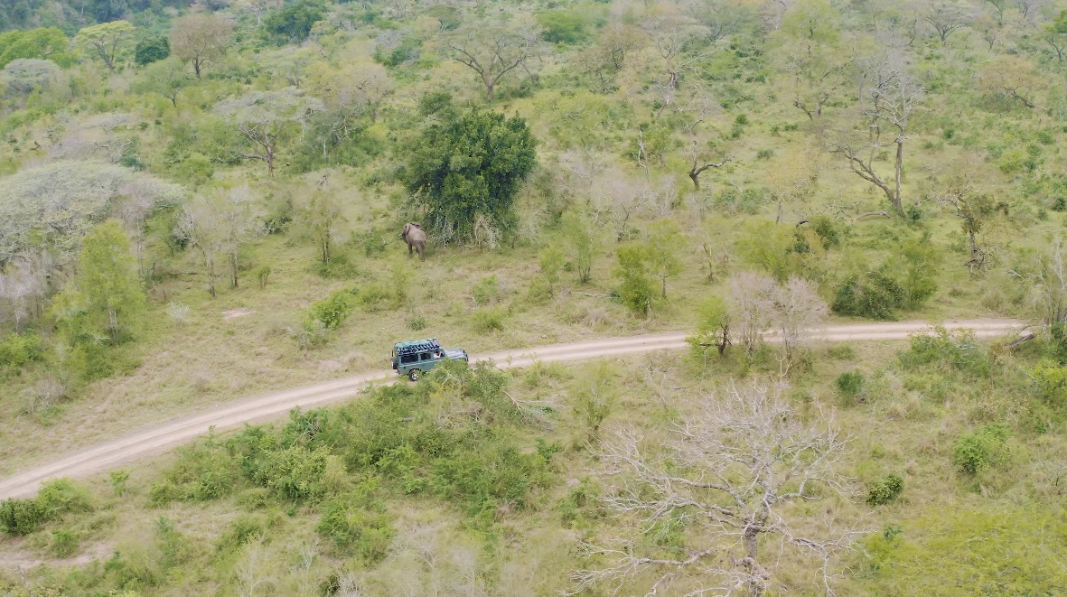 Andrew Bone's Land Rover pushes forward, while a nearby elephant strolls away.