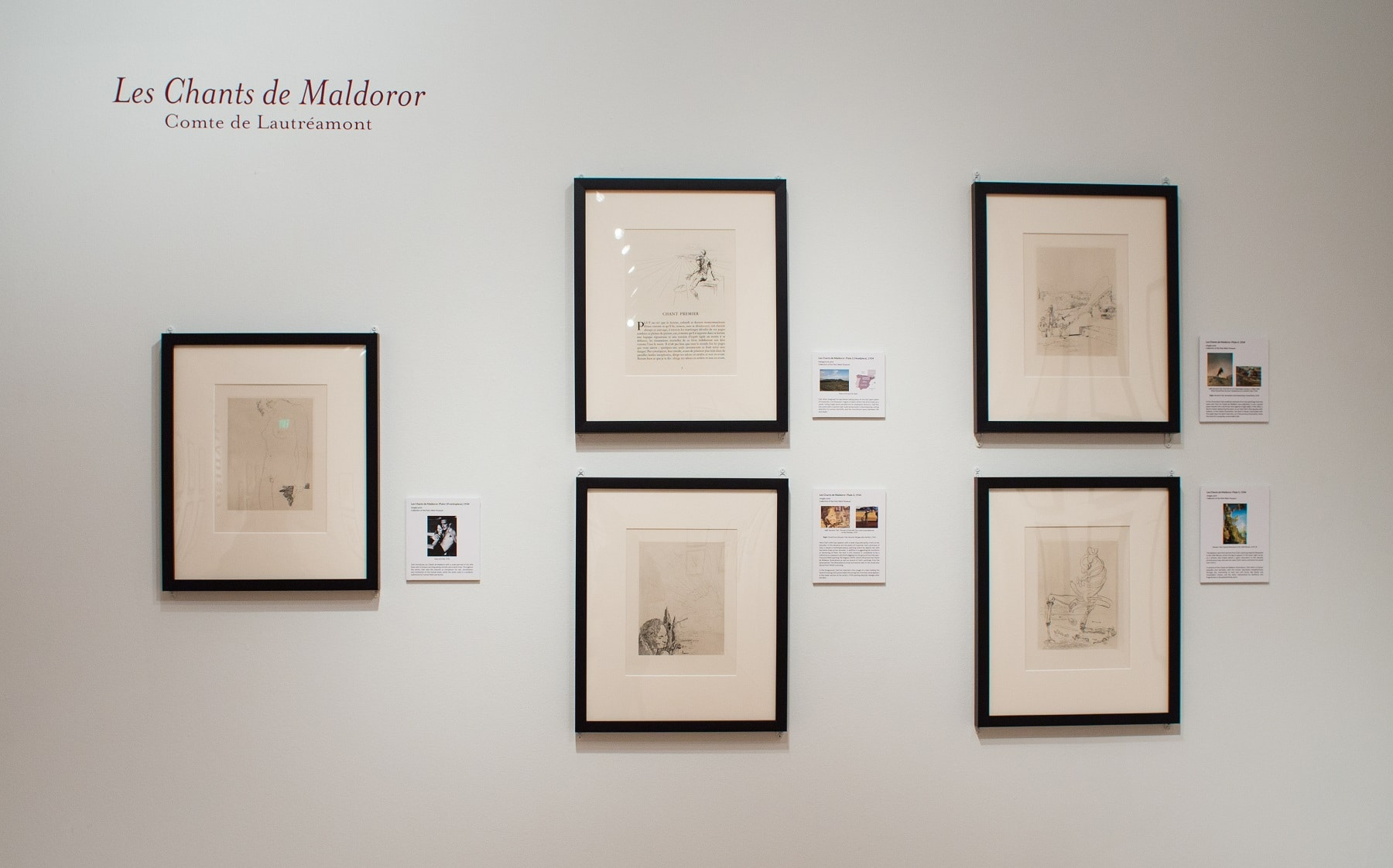 """The """"Les Chants de Maldoror"""" gallery from the """"Salvador Dalí's Stairway to Heaven"""" exhibition at Louisiana's Hilliard University Art Museum."""