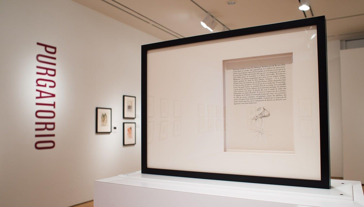 """A page of Dalí's illustrations from """"Les Chants de Maldoror"""" from the """"Salvador Dalí's Stairway to Heaven"""" exhibition at Louisiana's Hilliard University Art Museum."""