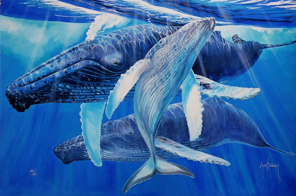 """""""Mother's Touch,"""" Guy Harvey"""